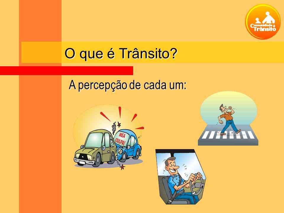 O que é Trânsito A percepção de cada um: