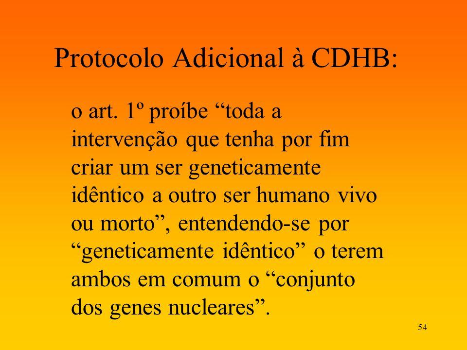 Protocolo Adicional à CDHB: