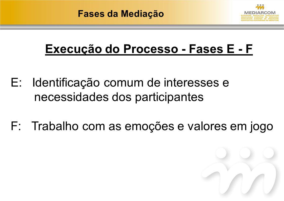 Execução do Processo - Fases E - F
