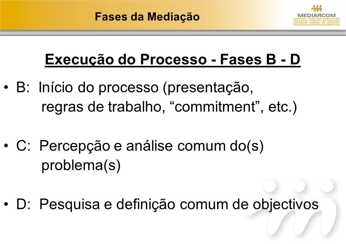Execução do Processo - Fases B - D