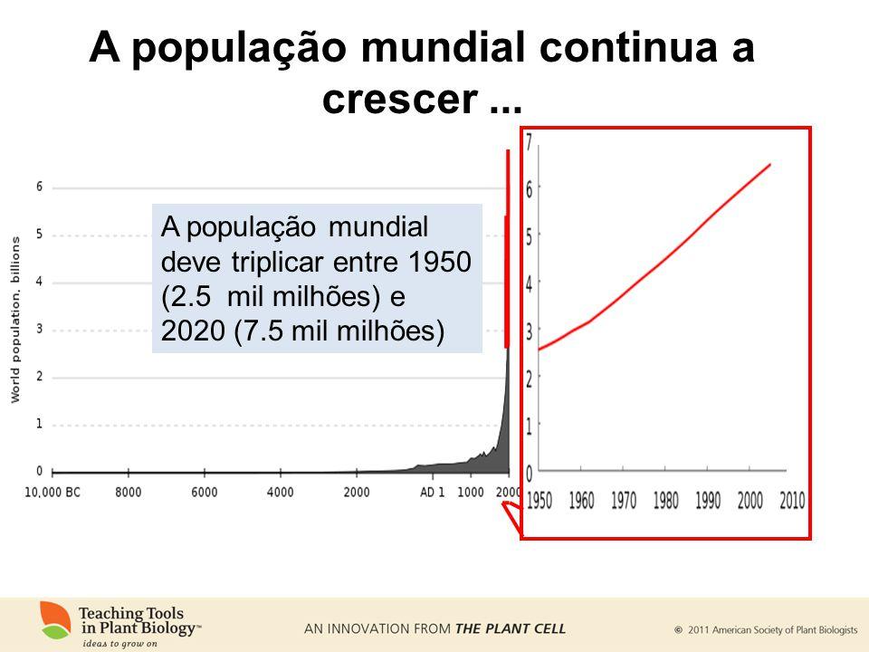 A população mundial continua a crescer ...