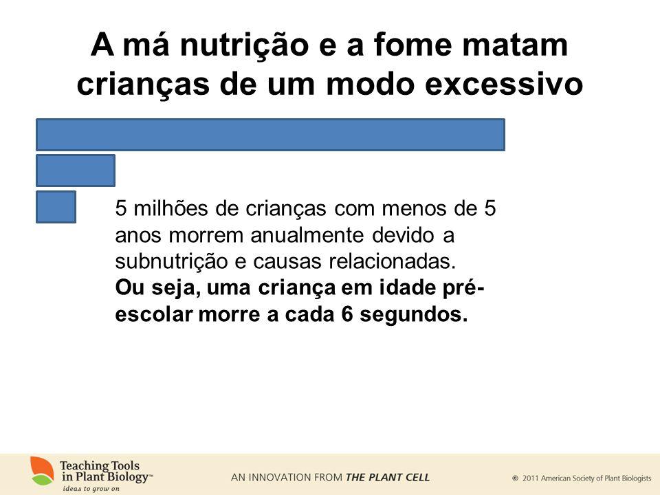 A má nutrição e a fome matam crianças de um modo excessivo