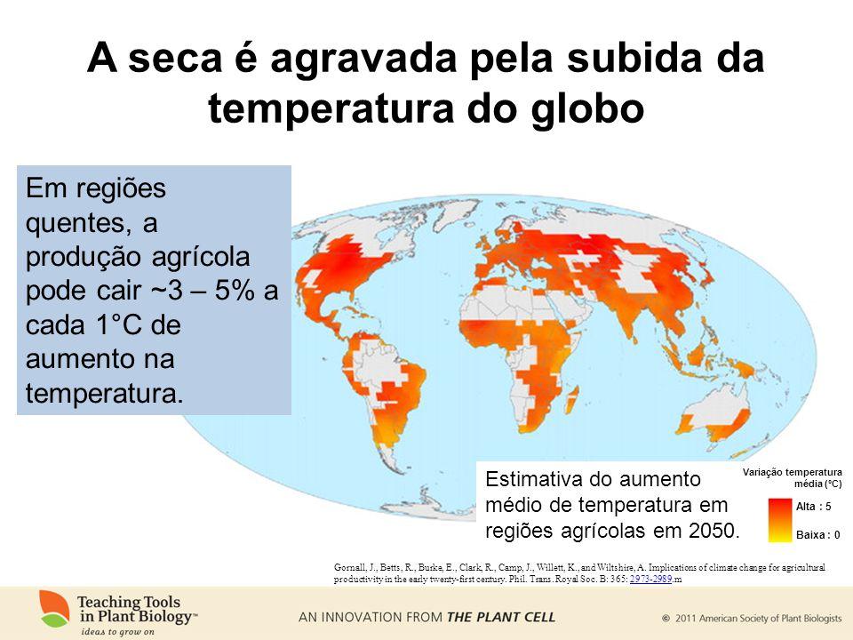 A seca é agravada pela subida da temperatura do globo