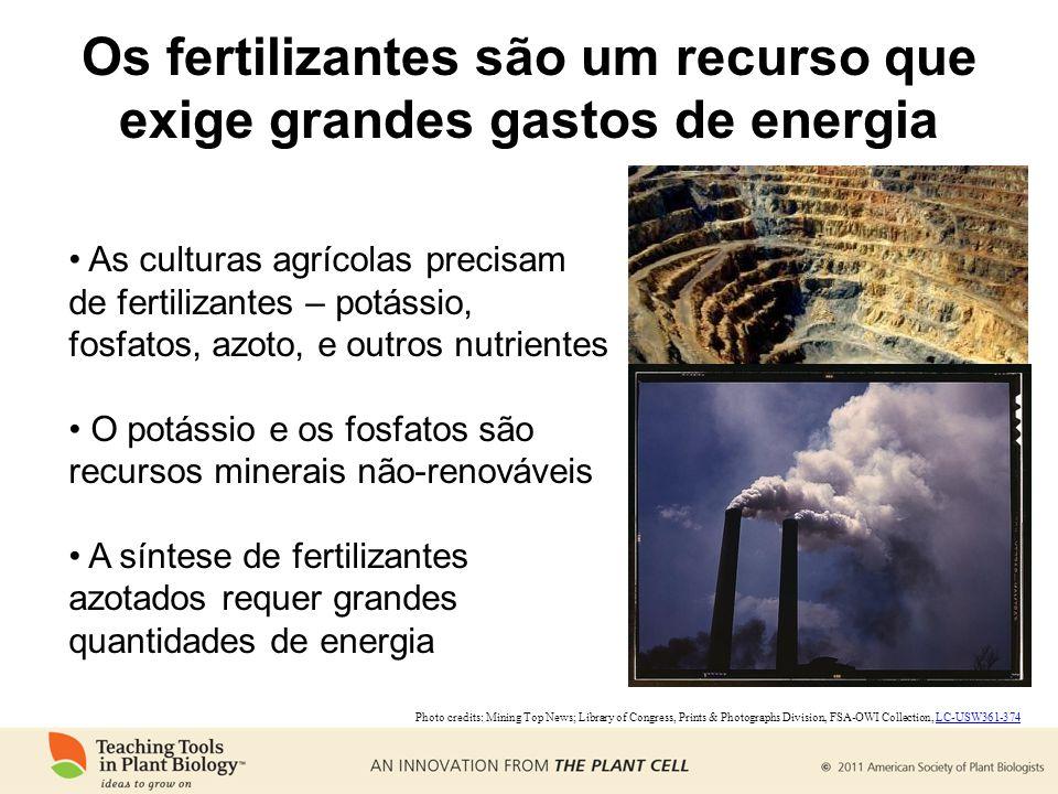 Os fertilizantes são um recurso que exige grandes gastos de energia