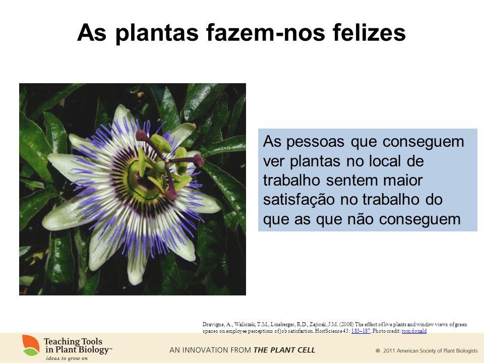 As plantas fazem-nos felizes