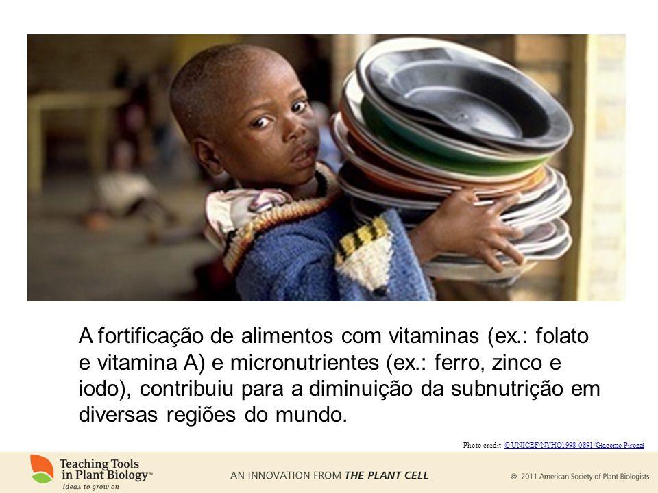 A fortificação de alimentos com vitaminas (ex
