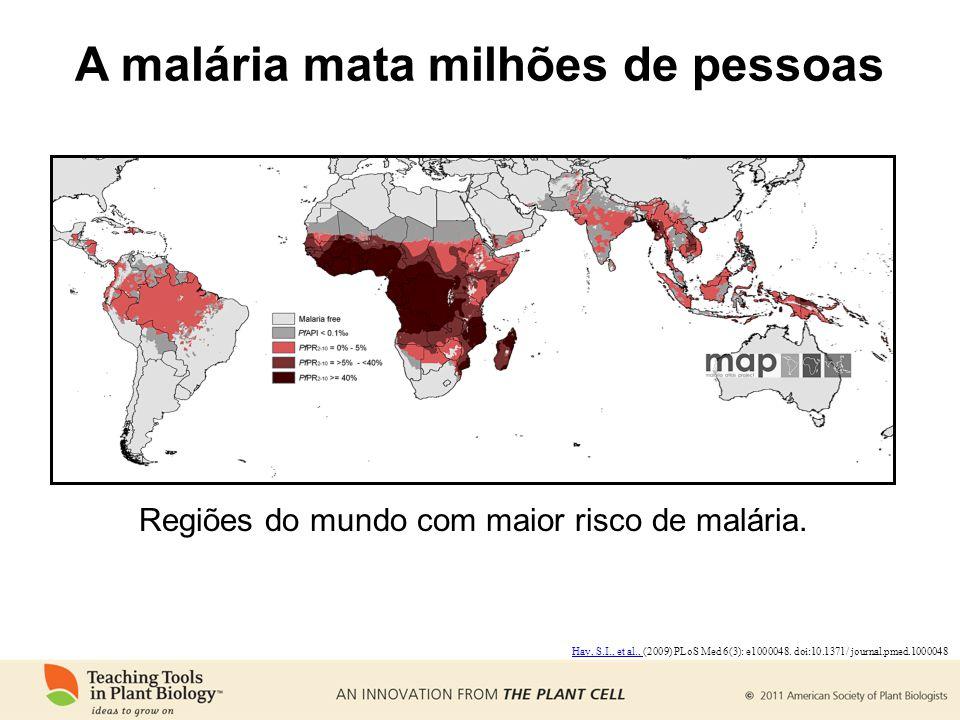 A malária mata milhões de pessoas