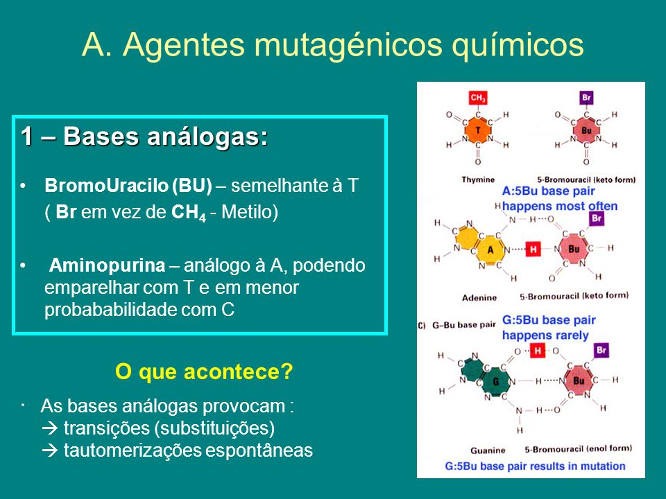 A. Agentes mutagénicos químicos