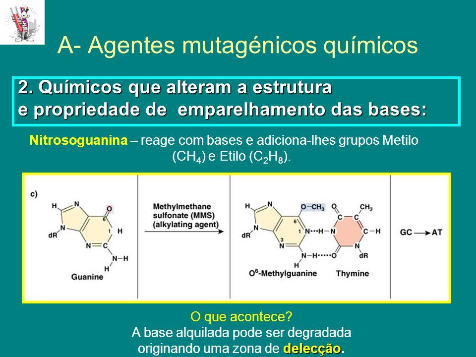 A- Agentes mutagénicos químicos