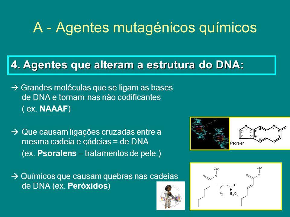 A - Agentes mutagénicos químicos