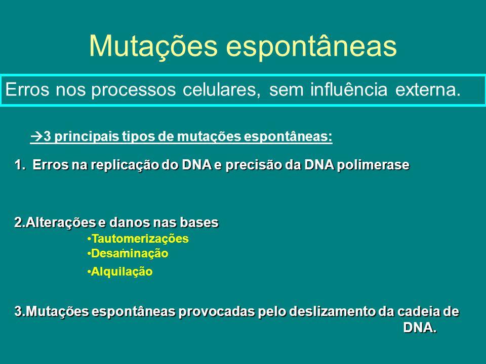 Mutações espontâneas Erros nos processos celulares, sem influência externa. 3 principais tipos de mutações espontâneas: