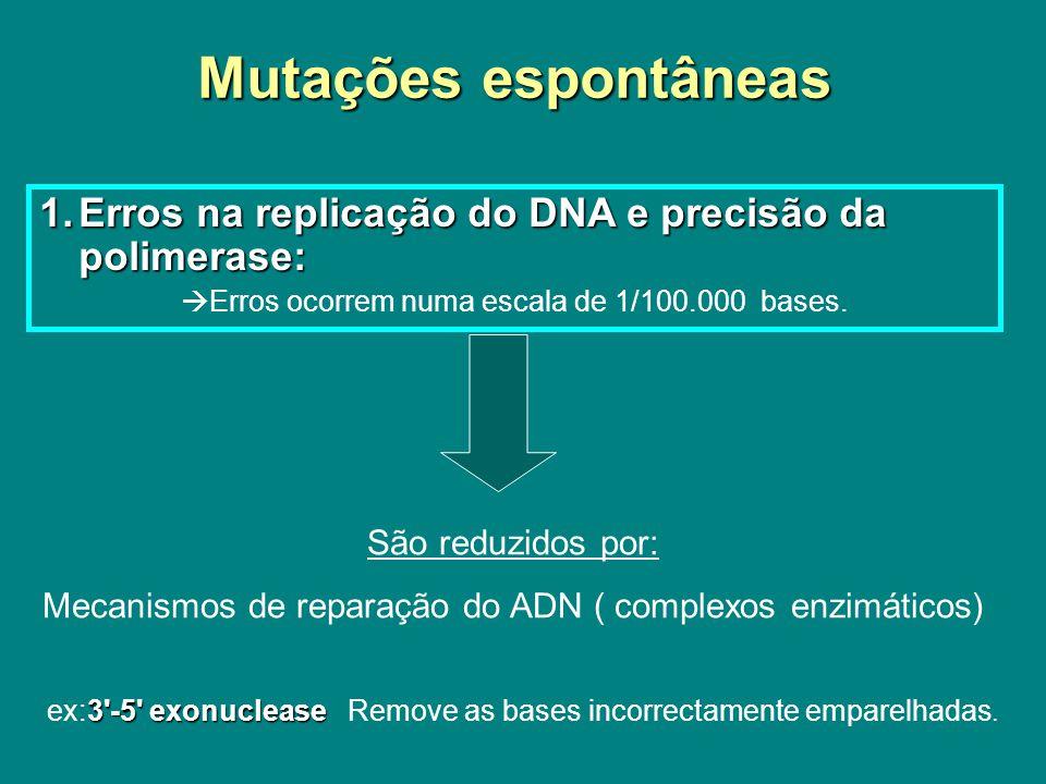Mutações espontâneas Erros na replicação do DNA e precisão da polimerase: Erros ocorrem numa escala de 1/100.000 bases.