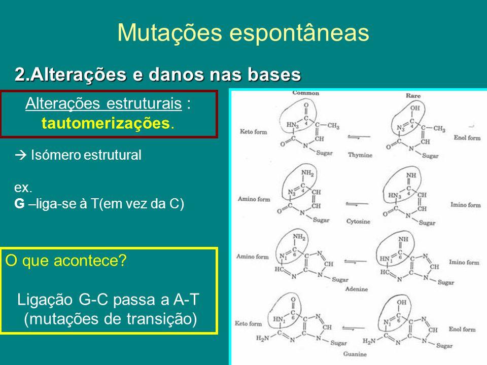 Mutações espontâneas 2.Alterações e danos nas bases