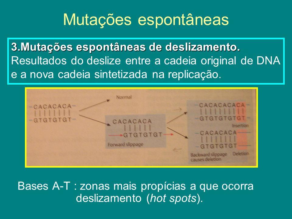 Mutações espontâneas 3.Mutações espontâneas de deslizamento.