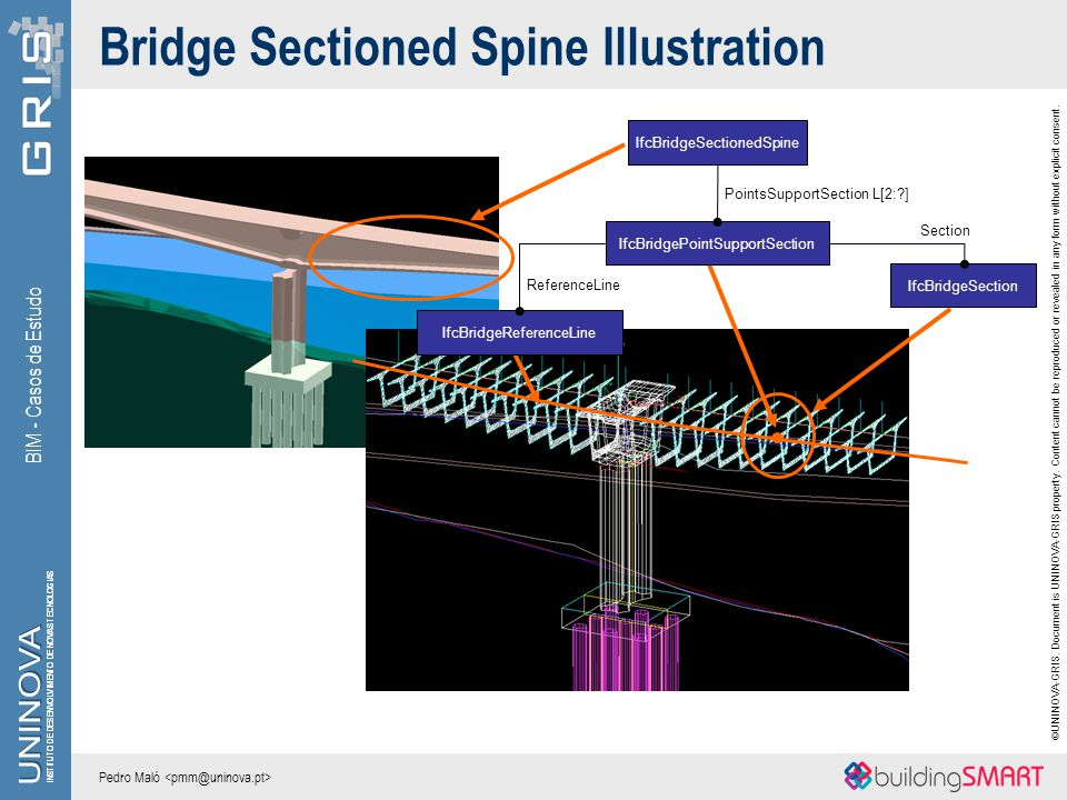Bridge Sectioned Spine Illustration