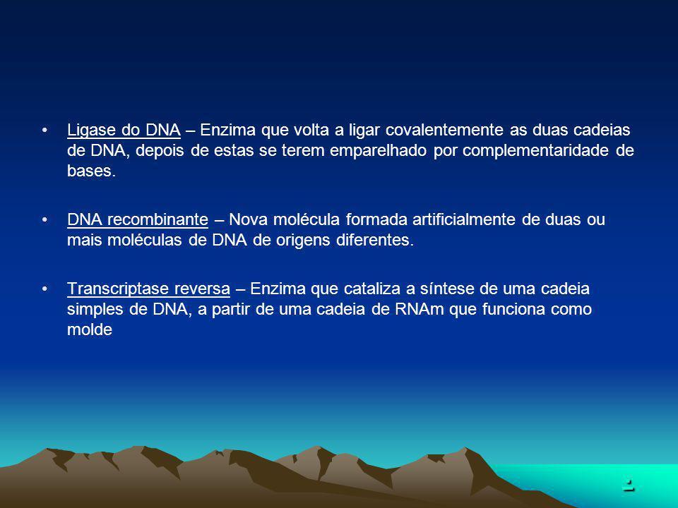 Ligase do DNA – Enzima que volta a ligar covalentemente as duas cadeias de DNA, depois de estas se terem emparelhado por complementaridade de bases.