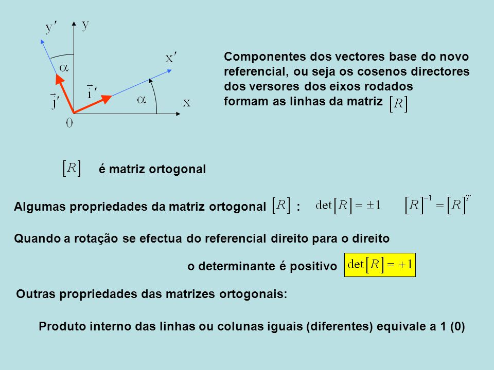Componentes dos vectores base do novo
