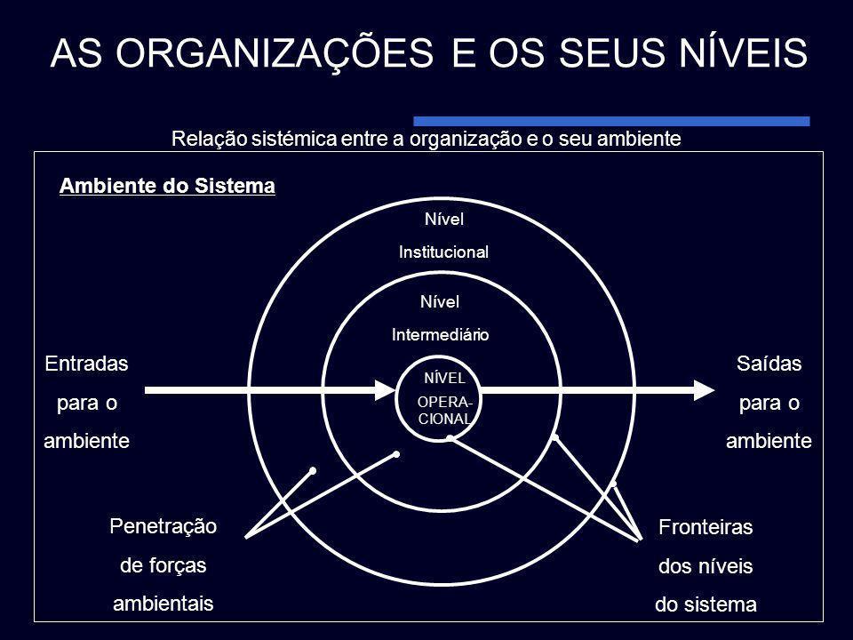 Relação sistémica entre a organização e o seu ambiente
