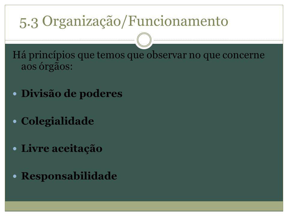 5.3 Organização/Funcionamento