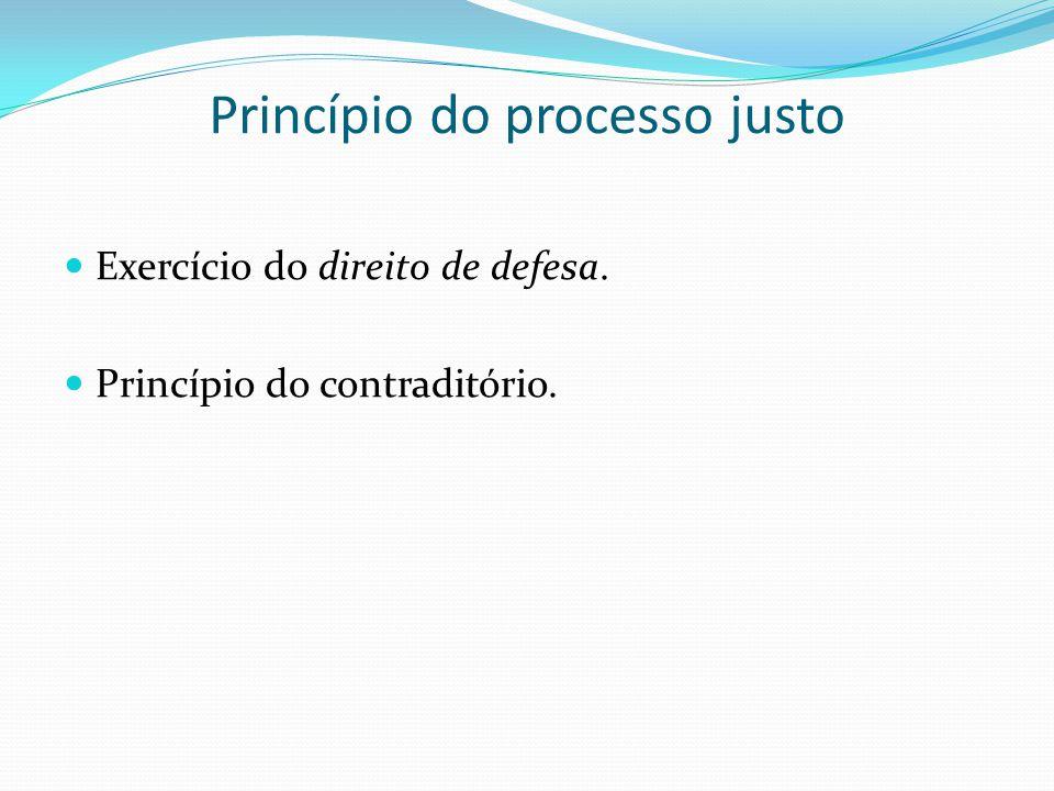 Princípio do processo justo