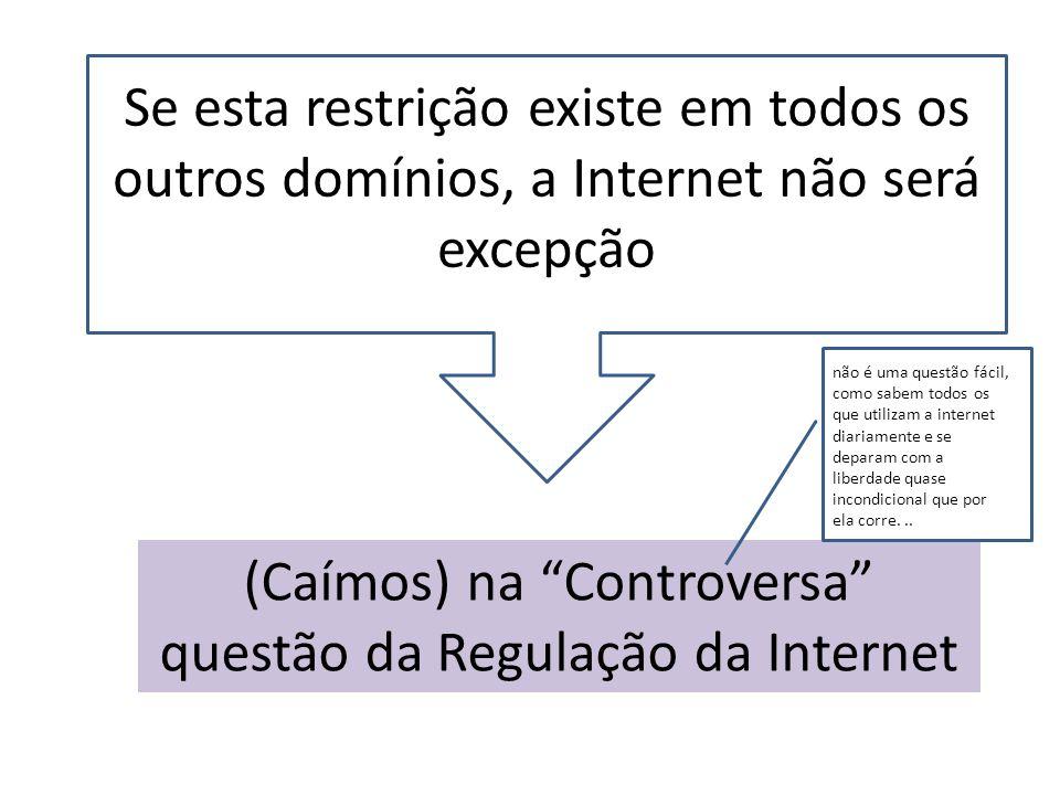 (Caímos) na Controversa questão da Regulação da Internet