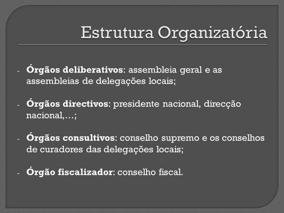 Estrutura Organizatória