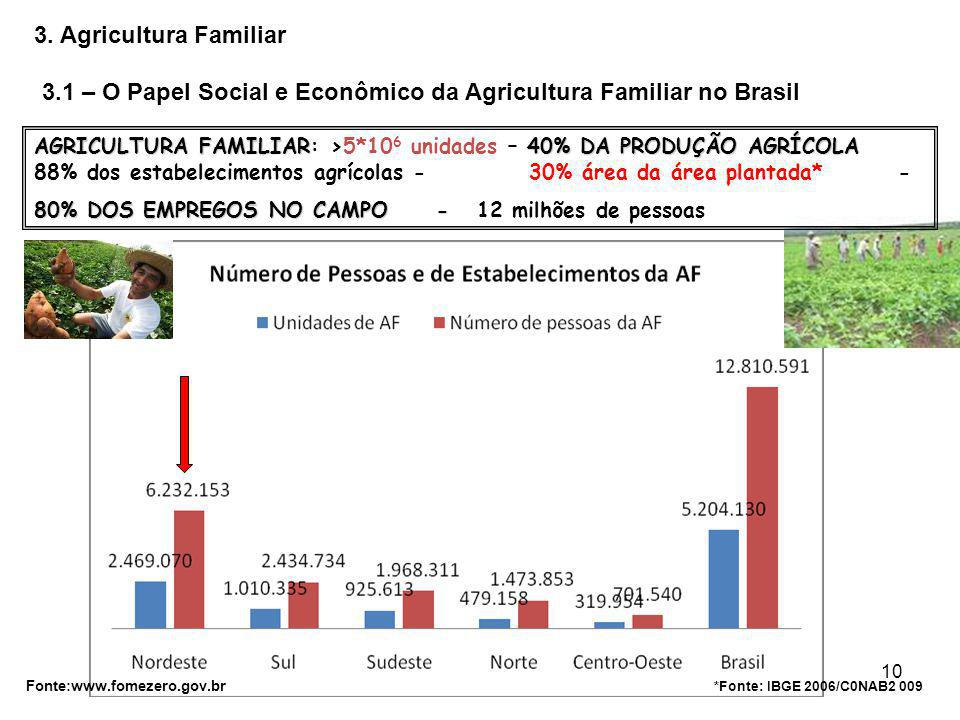 3.1 – O Papel Social e Econômico da Agricultura Familiar no Brasil