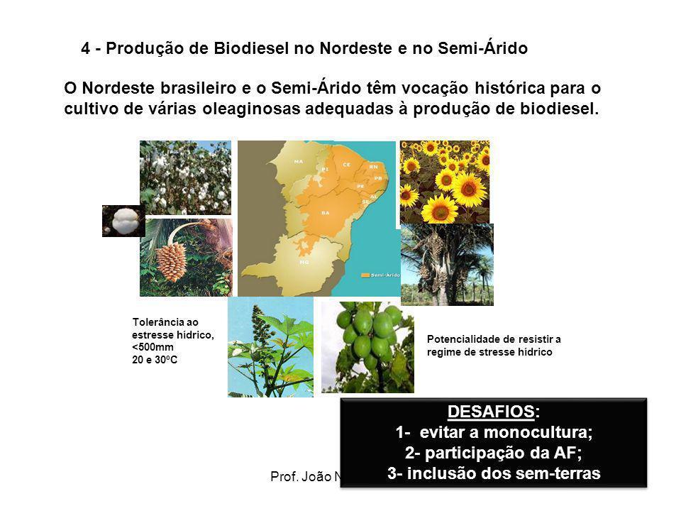 4 - Produção de Biodiesel no Nordeste e no Semi-Árido