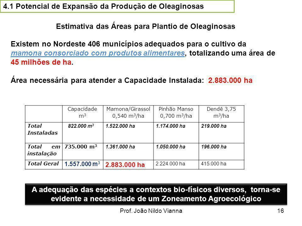 4.1 Potencial de Expansão da Produção de Oleaginosas