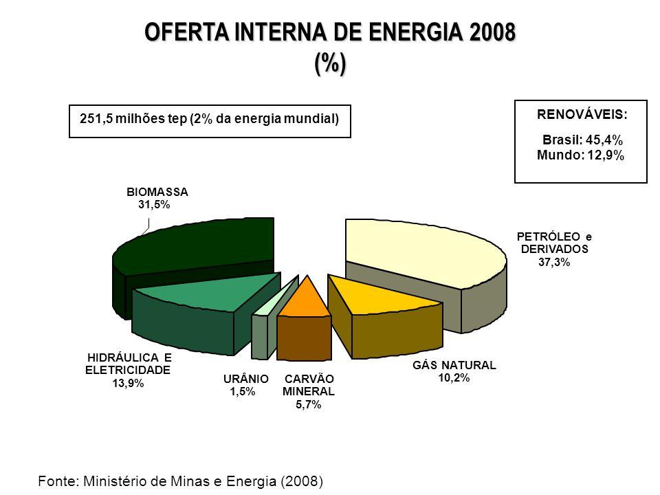 OFERTA INTERNA DE ENERGIA 2008 (%)