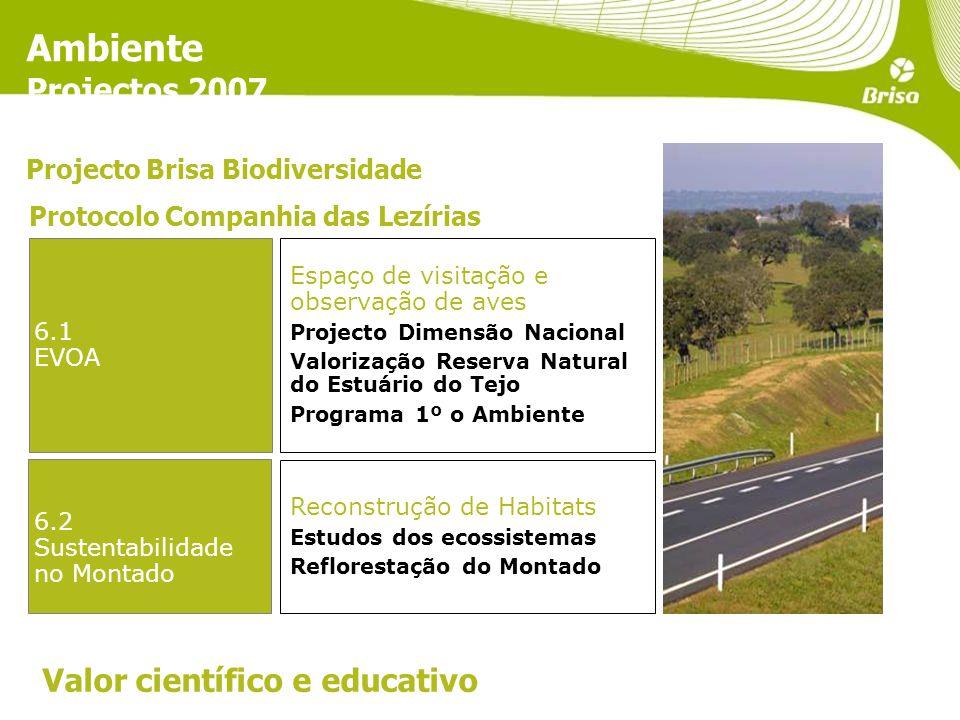 Ambiente Projectos 2007 Valor científico e educativo