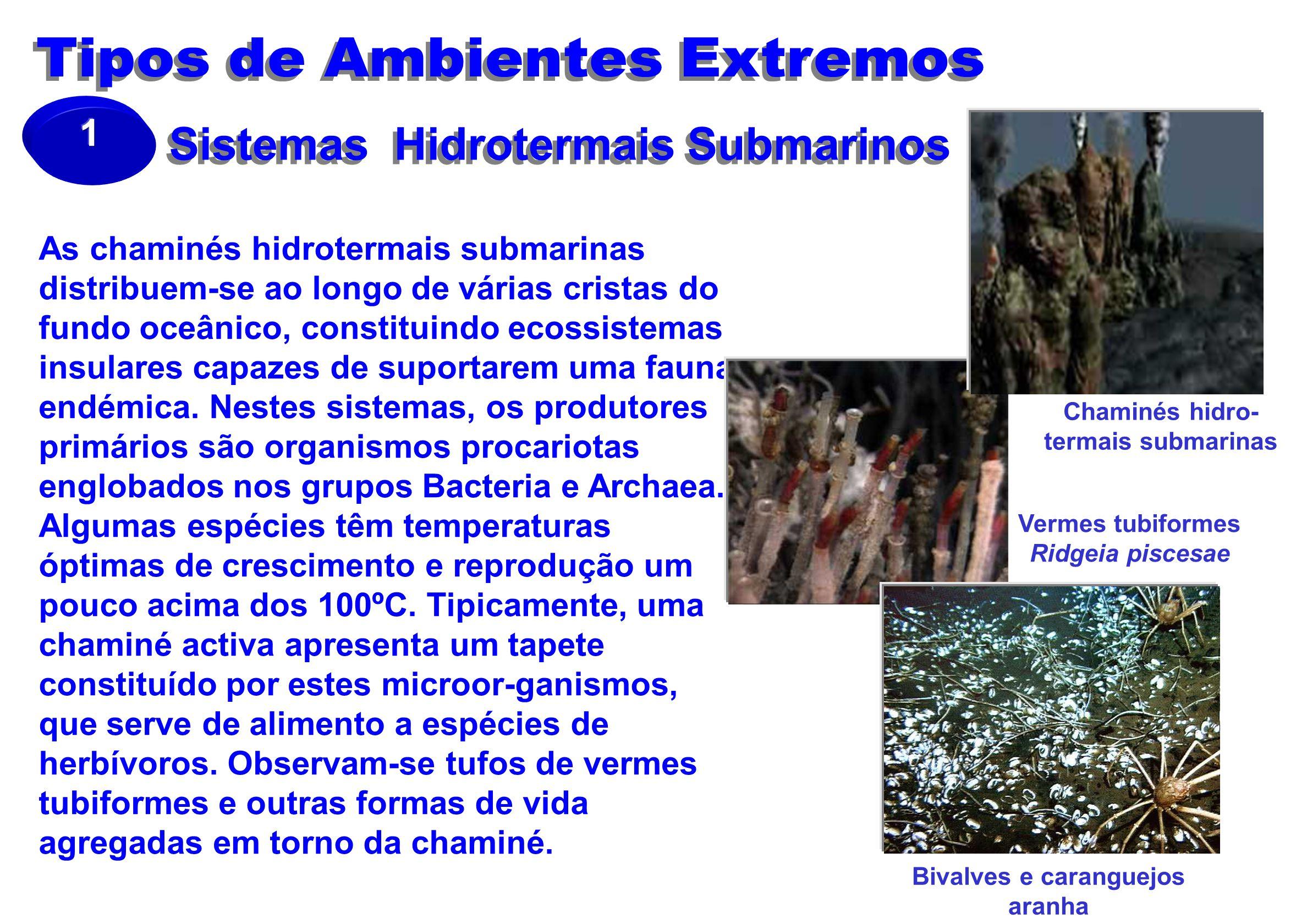 Sistemas Hidrotermais Submarinos