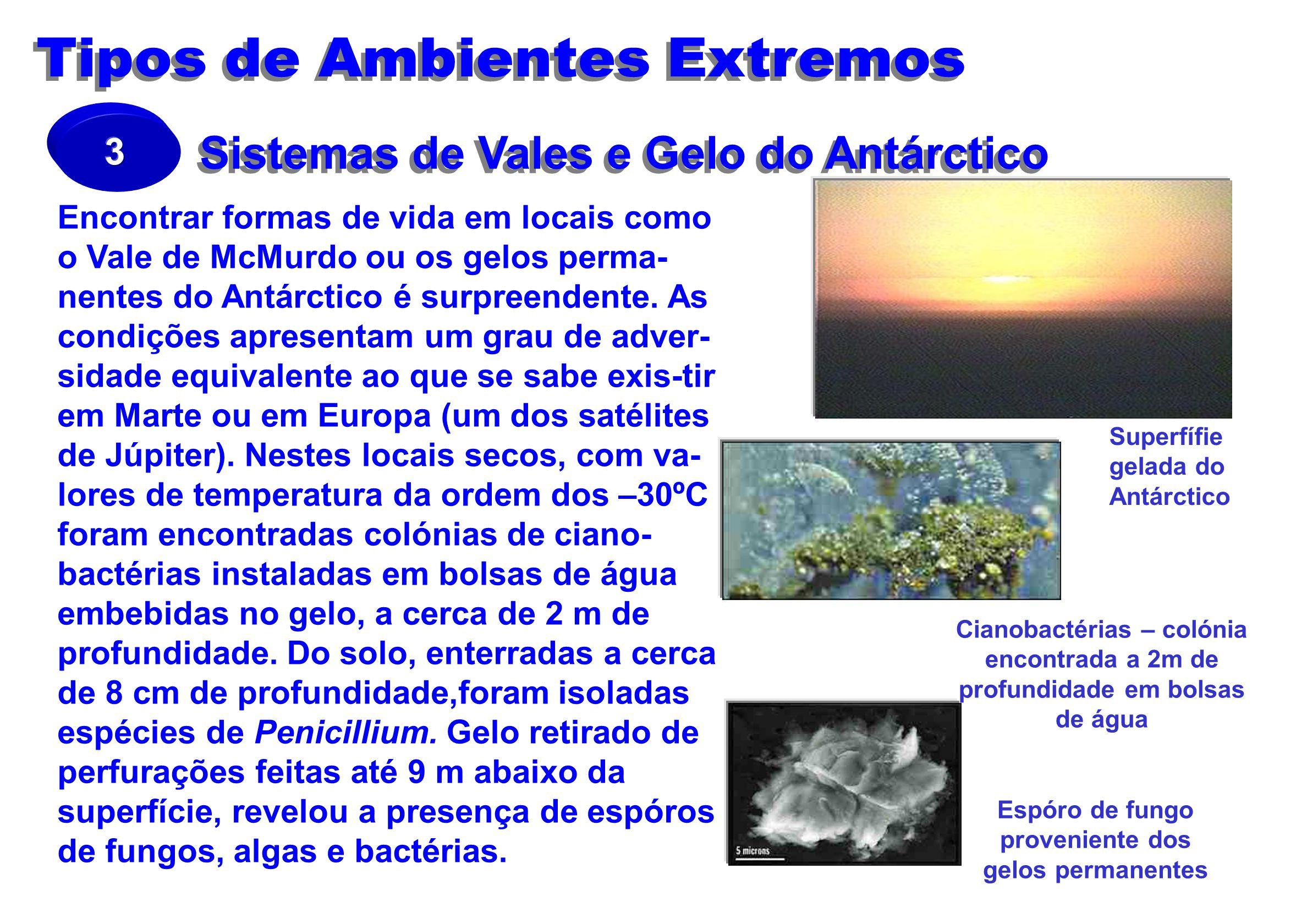 Sistemas de Vales e Gelo do Antárctico
