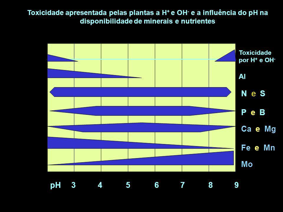 N e S P e B Ca e Mg Fe e Mn Mo pH 3 4 5 6 7 8 9