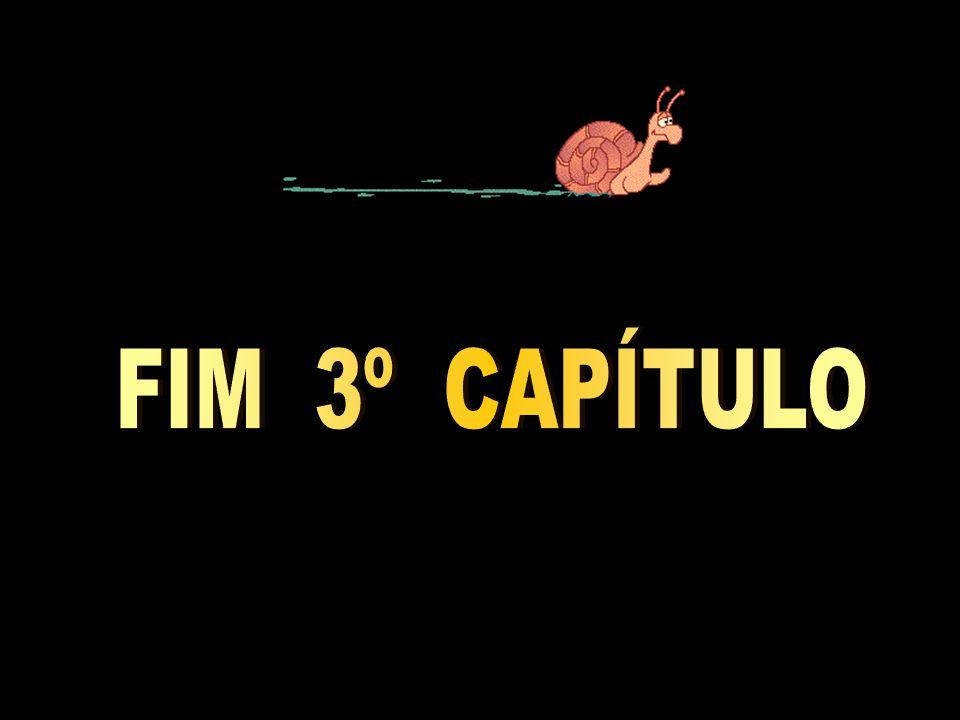 FIM 3º CAPÍTULO