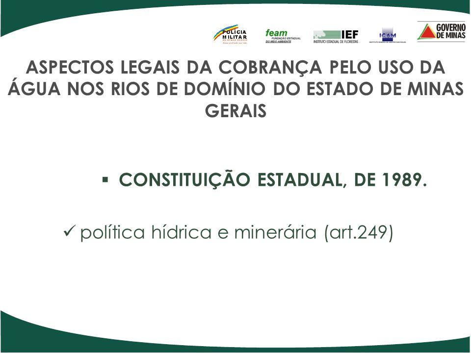 CONSTITUIÇÃO ESTADUAL, DE 1989.