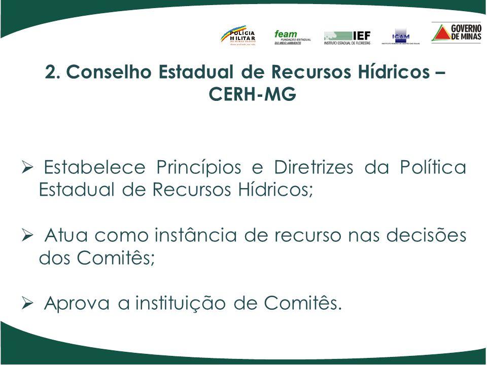 2. Conselho Estadual de Recursos Hídricos – CERH-MG