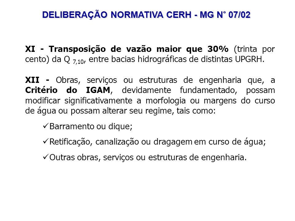 DELIBERAÇÃO NORMATIVA CERH - MG N° 07/02