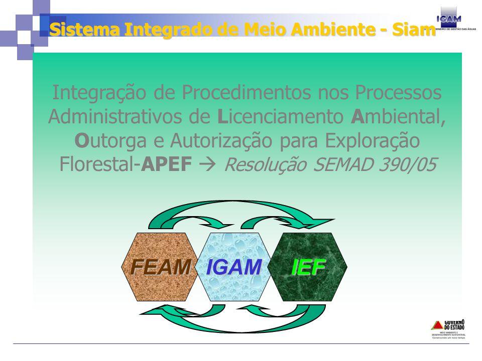 Sistema Integrado de Meio Ambiente - Siam