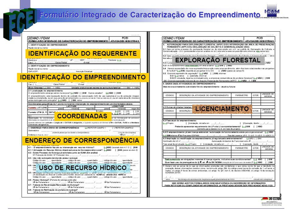 Formulário Integrado de Caracterização do Empreendimento
