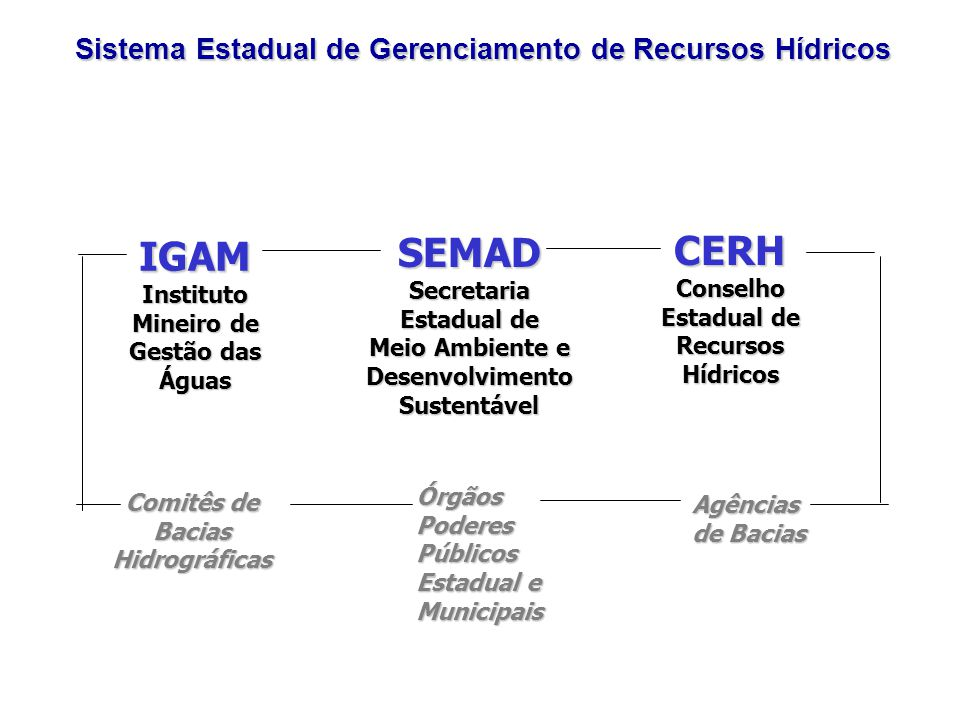 SEMAD CERH IGAM Sistema Estadual de Gerenciamento de Recursos Hídricos