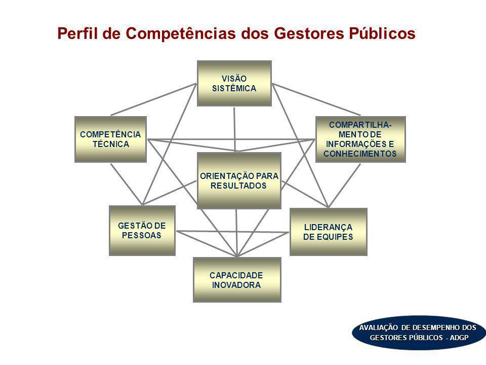 Perfil de Competências dos Gestores Públicos