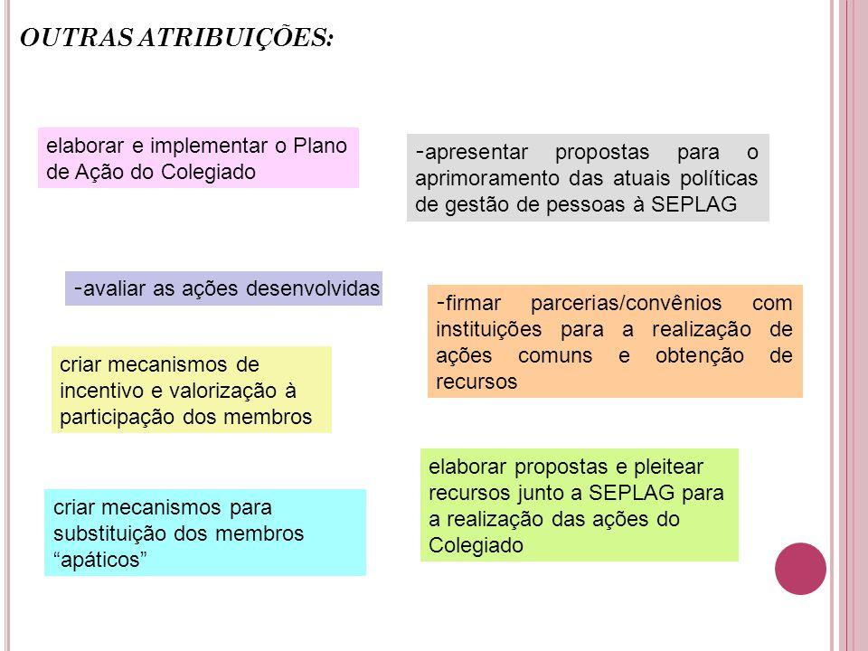 OUTRAS ATRIBUIÇÕES: elaborar e implementar o Plano de Ação do Colegiado.
