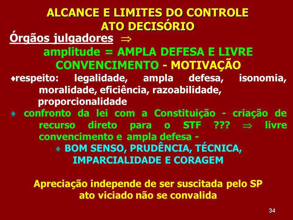 ALCANCE E LIMITES DO CONTROLE ATO DECISÓRIO