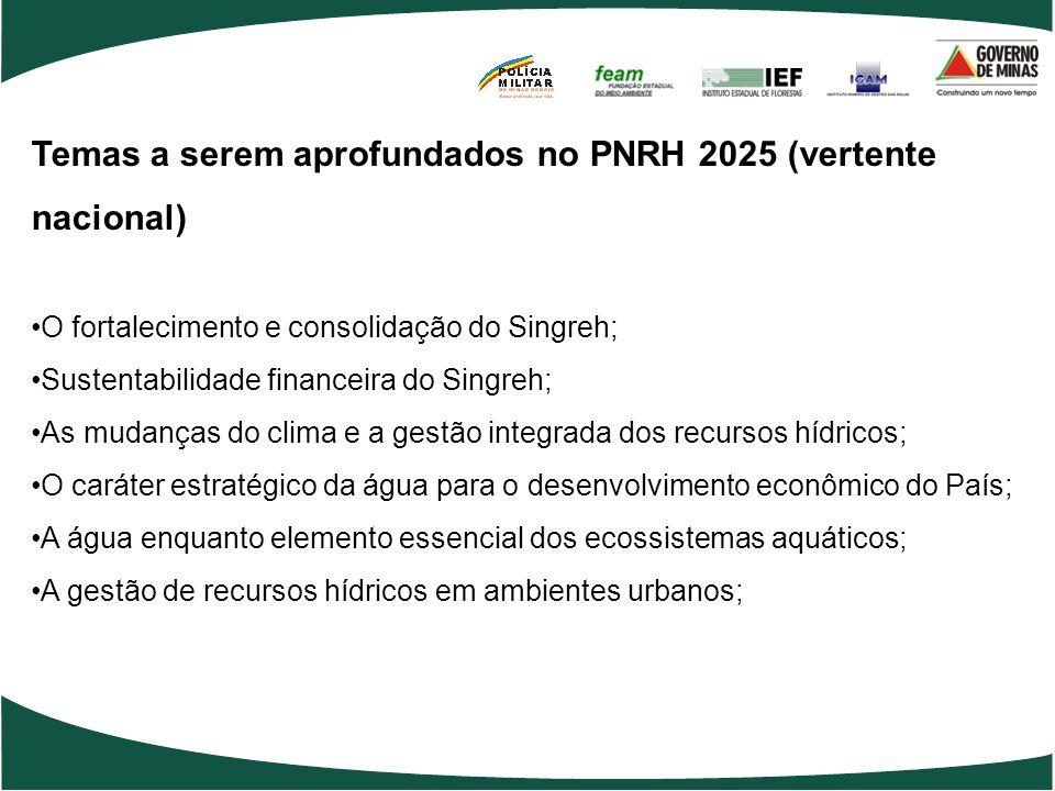 Temas a serem aprofundados no PNRH 2025 (vertente nacional)