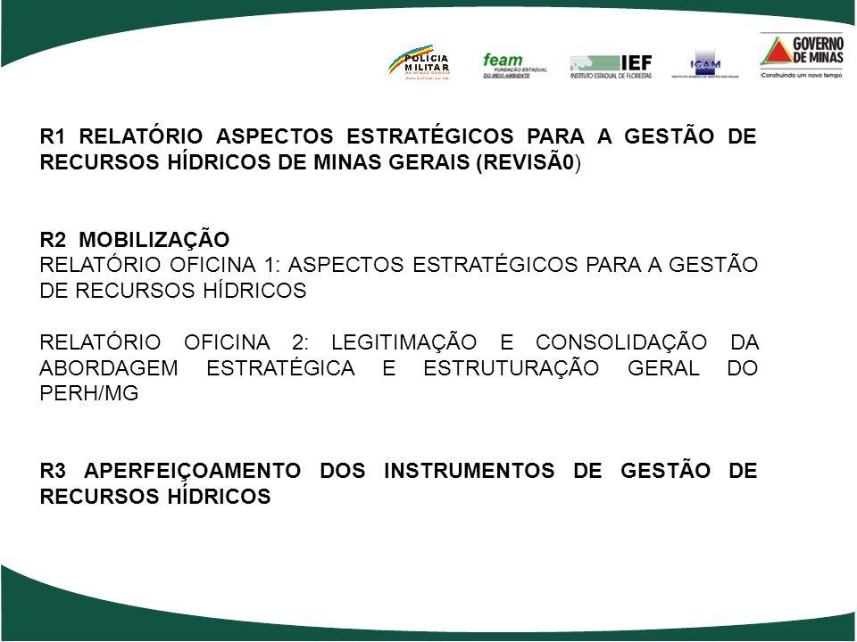 R1 RELATÓRIO ASPECTOS ESTRATÉGICOS PARA A GESTÃO DE RECURSOS HÍDRICOS DE MINAS GERAIS (REVISÃ0)