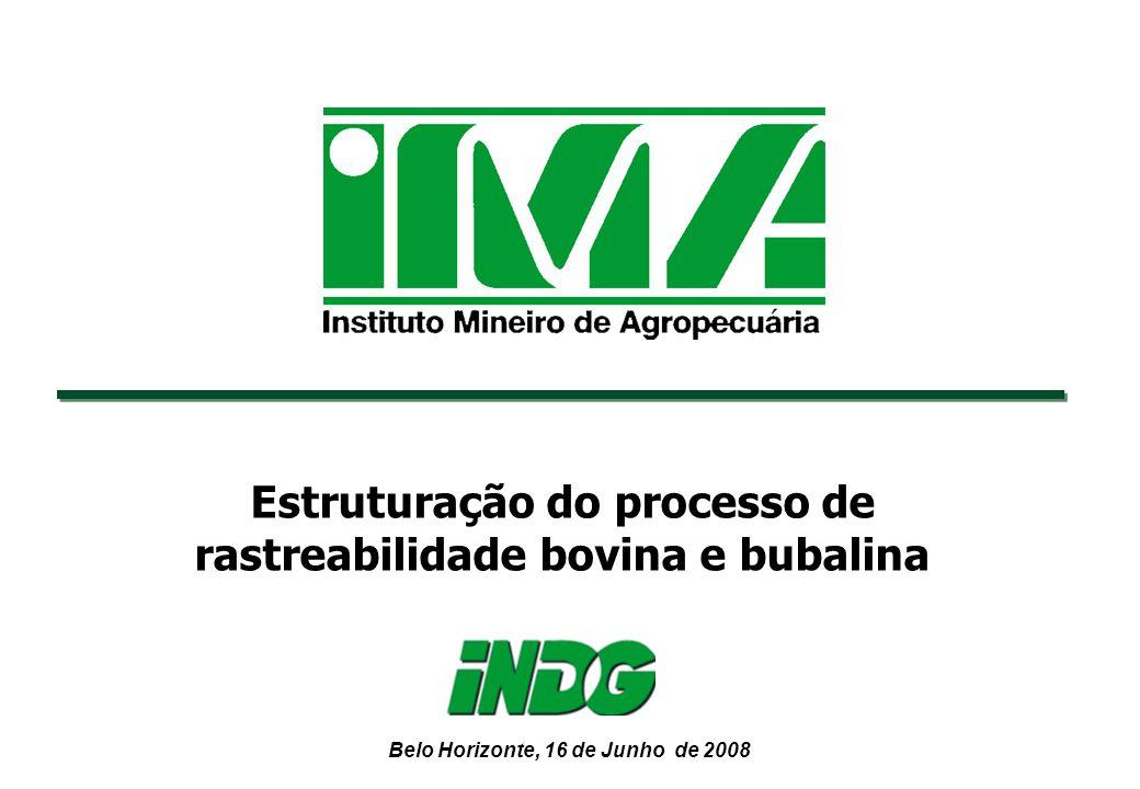 Estruturação do processo de rastreabilidade bovina e bubalina