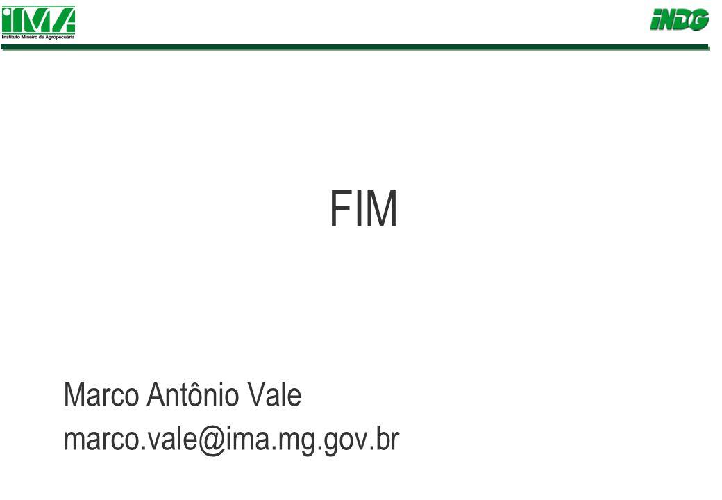 FIM Marco Antônio Vale marco.vale@ima.mg.gov.br