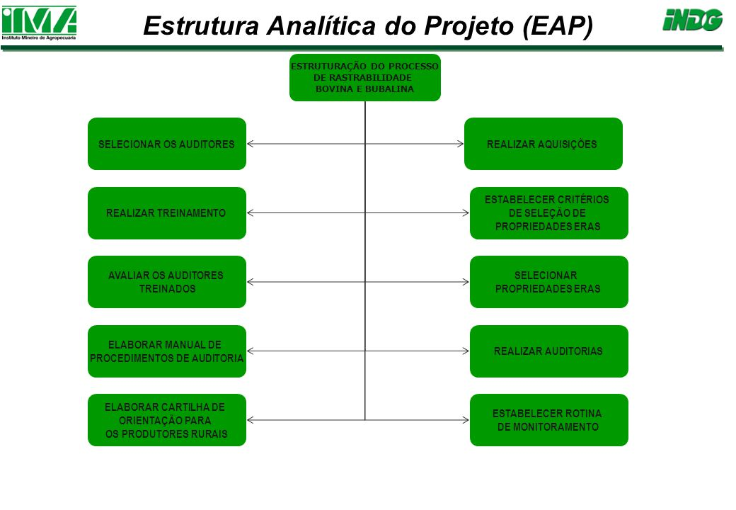 Estrutura Analítica do Projeto (EAP)