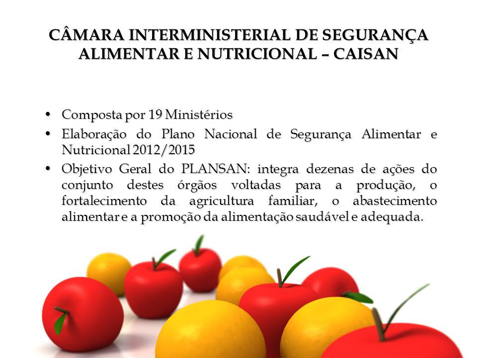 CÂMARA INTERMINISTERIAL DE SEGURANÇA ALIMENTAR E NUTRICIONAL – CAISAN